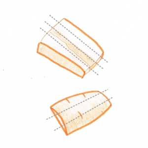 Hand drawing of thick slices of carrot showing cutting guidelines (grey dotted lines)