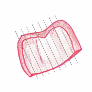 Hand drawing of a chunk of red pepper showing cutting guidelines (grey dotted lines)