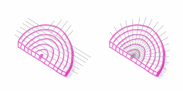 Hand drawing of two onion slices with cutting guidelines (grey dotted lines)