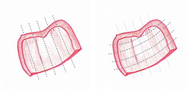 Hand drawing of two chunks of red pepper showing cutting guidelines (grey dotted lines)