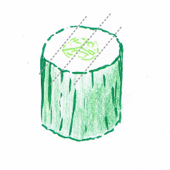 Hand drawing of a chunk of dark green cucumber with cutting guidelines (grey dotted lines)